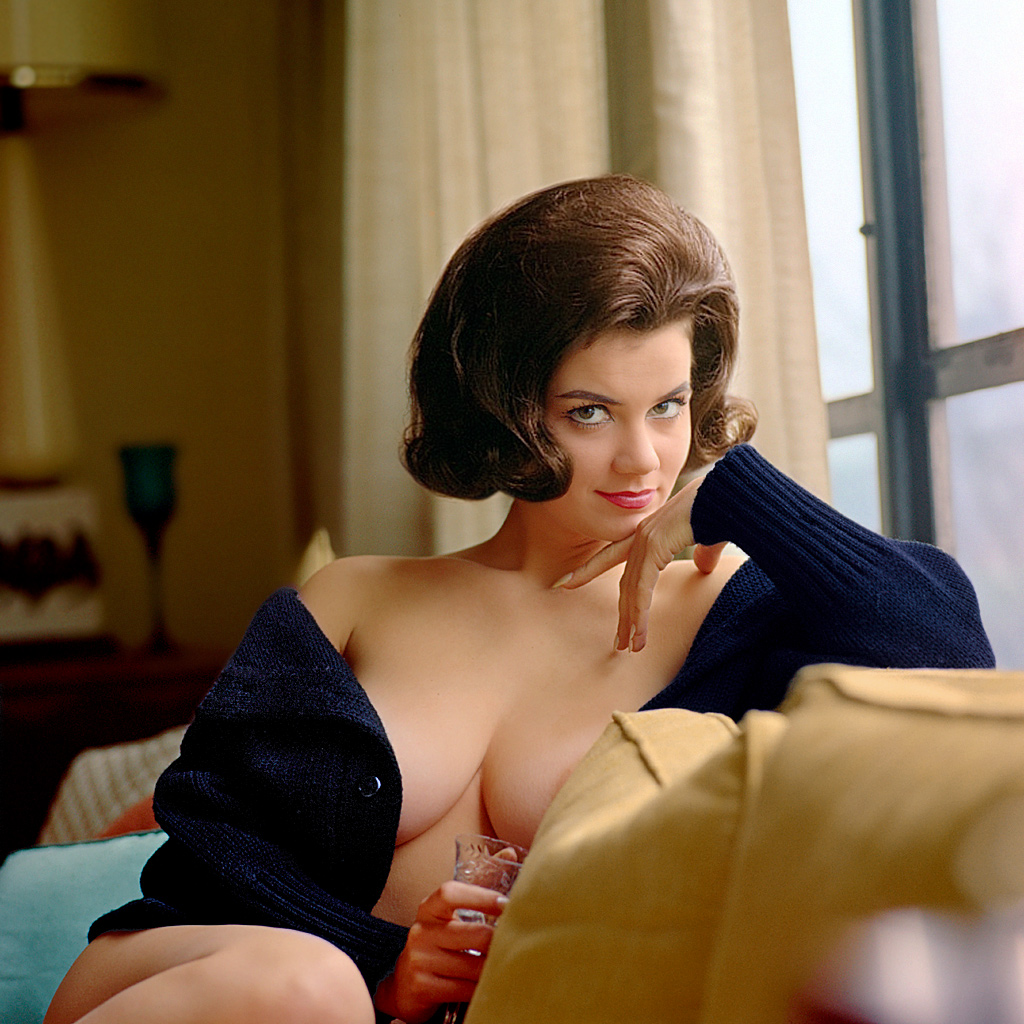 Naked annette fakes funicello